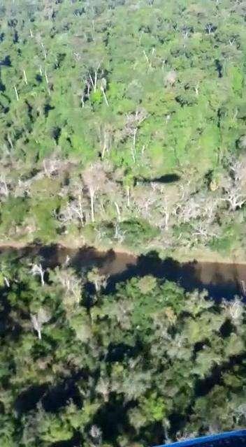 8000 hectáreas en Yhu Caaguazú - 0