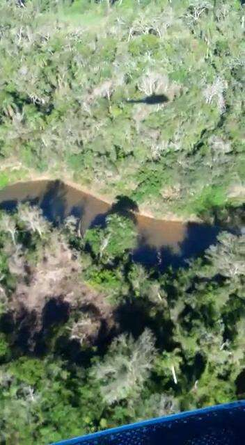 8000 hectáreas en Yhu Caaguazú - 1