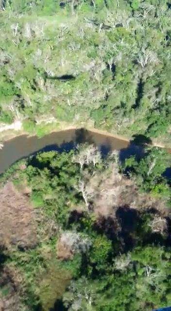 8000 hectáreas en Yhu Caaguazú - 2