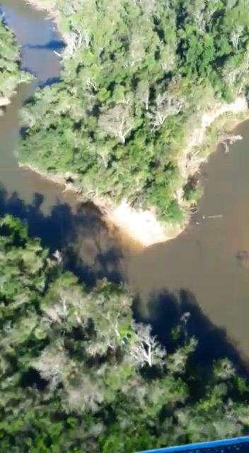8000 hectáreas en Yhu Caaguazú - 3