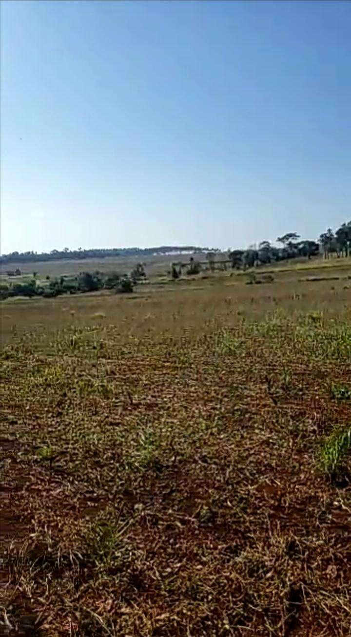 8.7 hectáreas en km 16 Acaray - 4