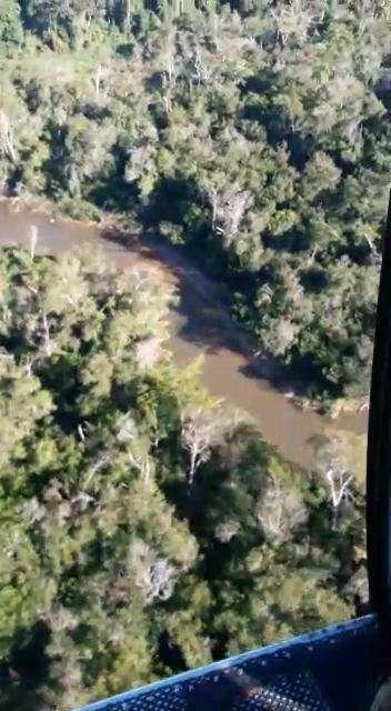 8000 hectáreas en Yhu Caaguazú - 4