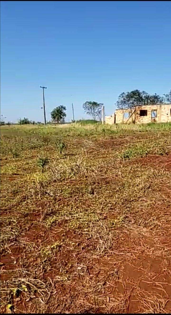 8.7 hectáreas en km 16 Acaray - 5