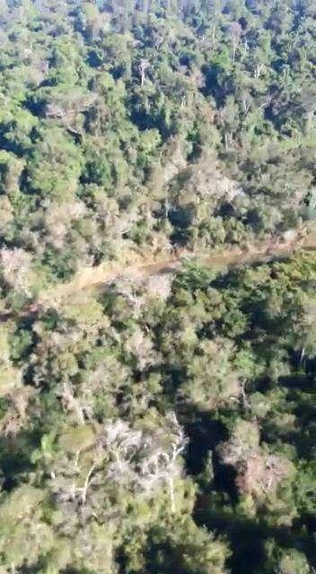 8000 hectáreas en Yhu Caaguazú - 7