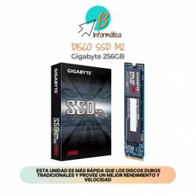 Disco SSD M2 256GB Kingston