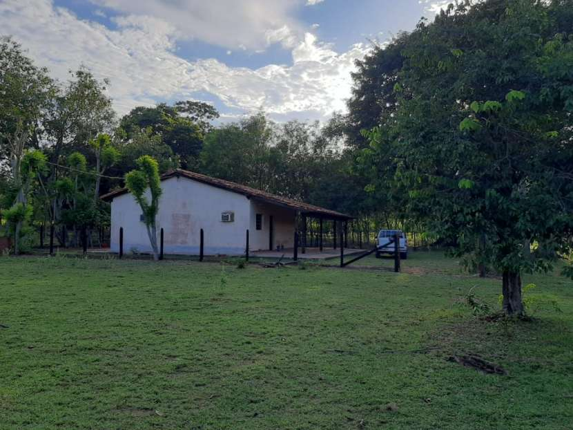 Campo de 230 hectáreas en Santa Rosa del Mbutuy - 5