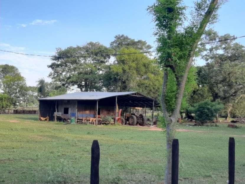 Campo de 230 hectáreas en Santa Rosa del Mbutuy - 4