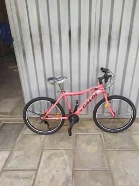 Bicicleta Caloi New Rider A24
