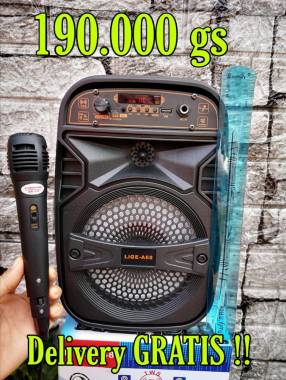 Parlante karaoke de 6,5 pulgadas