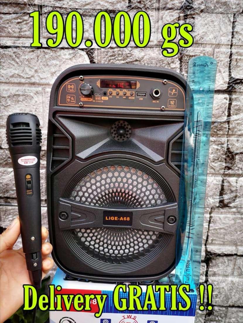 Parlante karaoke de 6,5 pulgadas - 0