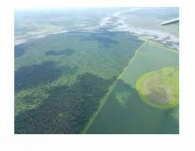 Campo rural de 8.000 hectáreas en Caaguazú