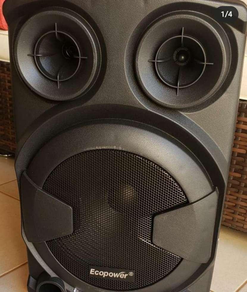 Speaker profesional - 0