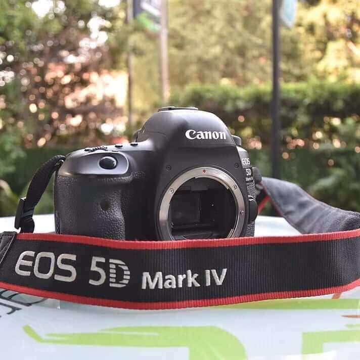Canon EOS 5D Mark IV DSLR Canon EF 24-70mm F4L IS USM Lens - 2