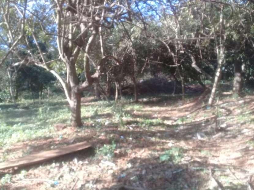 Terreno de 8.900 m2 Salinas San Antonio fondo con arroyo guazú - 7