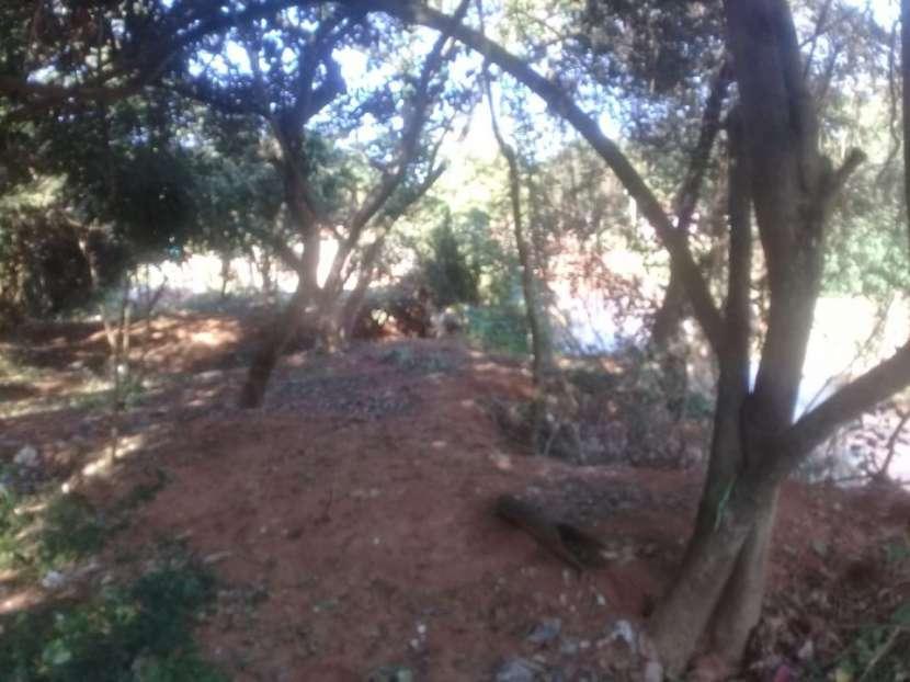 Terreno de 8.900 m2 Salinas San Antonio fondo con arroyo guazú - 5