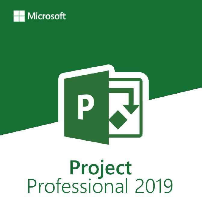 Microsoft Project 2019 professional - 1