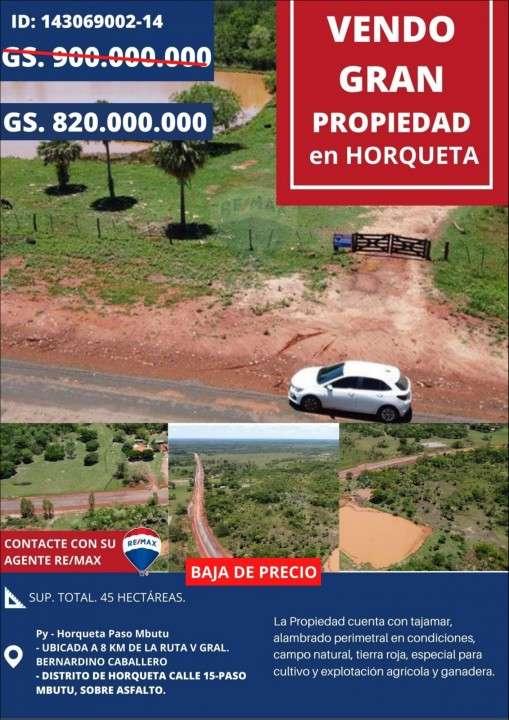 Propiedad de 45 hectáreas Paso Mbutu Horqueta - 0