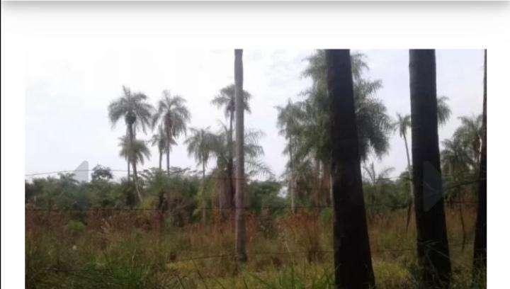 Terreno de 5 hectáreas en Atyrá - 0