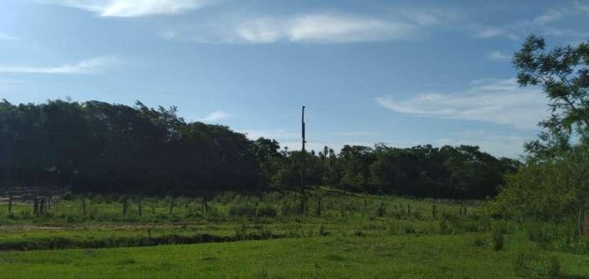Terreno de 2 hectáreas zona Piribebuy - 1