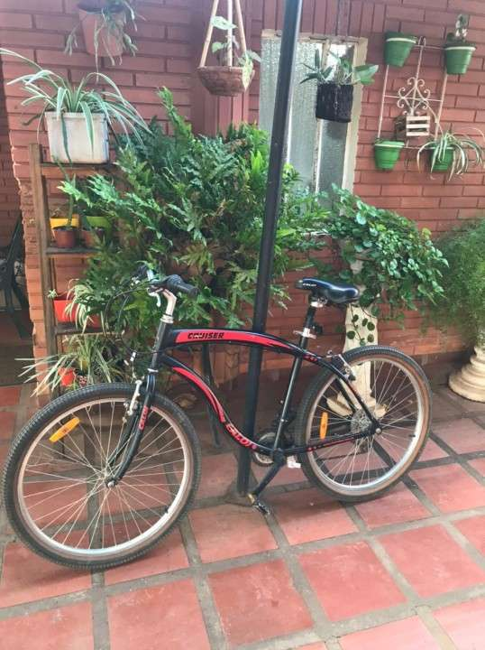 Bicicleta Cruiser aro 26 - 1