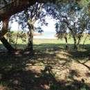 Terreno en San Bernardino - 1