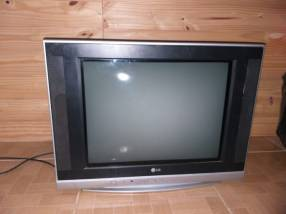 TV LG de 29 pulgadas con control