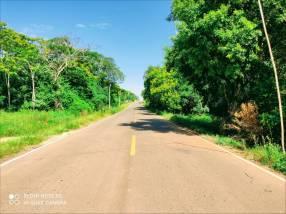 Terreno 7.5 hectáreas sobre asfalto en Nueva Italia Isla Guavirá