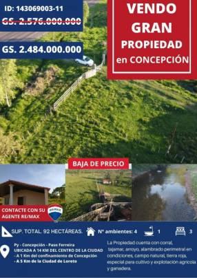 Estancia formada de 92 hectáreas Costa Ferreira Concepción