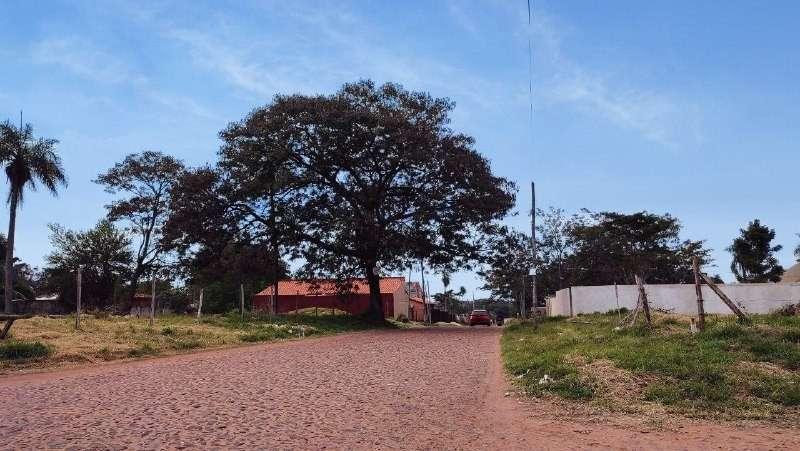 Dos terrenos en Ñemby cerca de Acceso Sur - 1