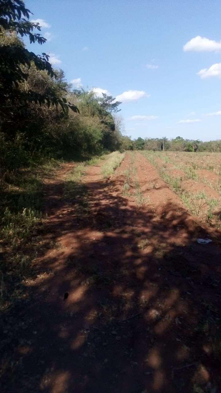 Terreno de 1,5 hectáreas en Guarambaré - 0