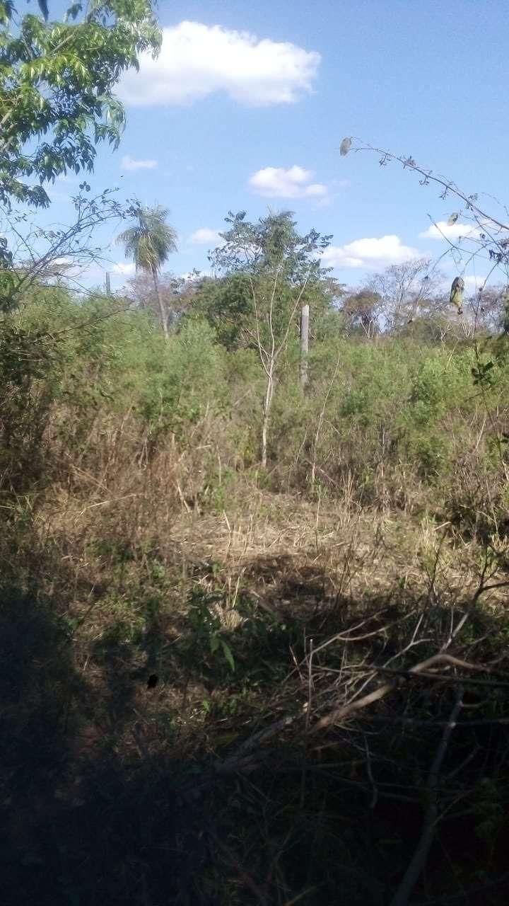 Terreno de 1,5 hectáreas en Guarambaré - 1