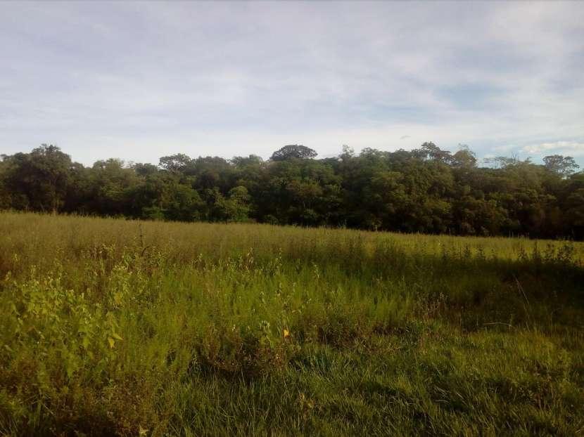 3 hectáreas en Mbuyapey - 1