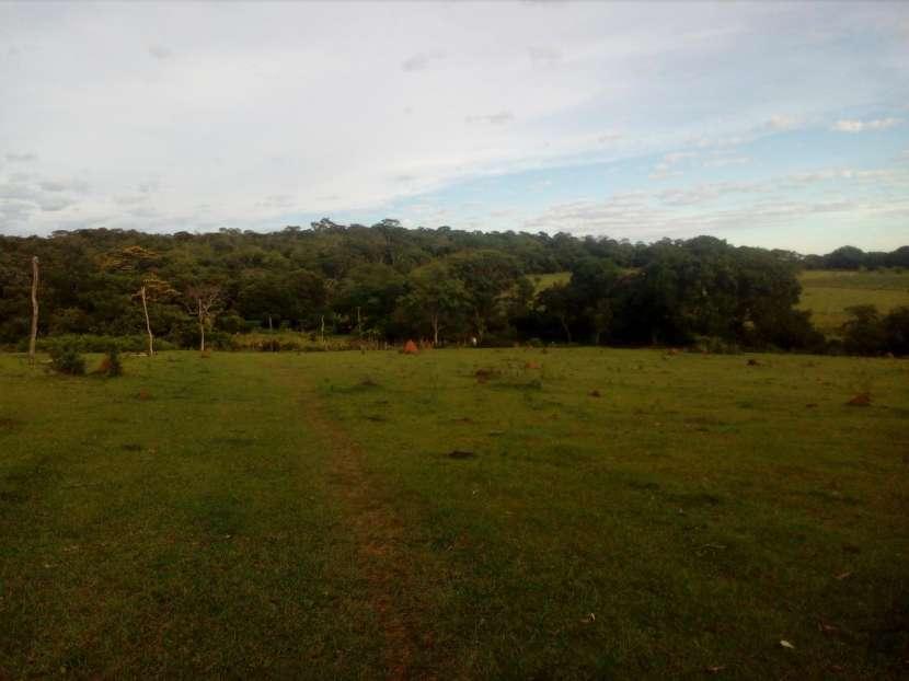 3 hectáreas en Mbuyapey - 4