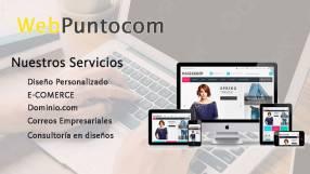 Web Puntocom diseño de páginas web