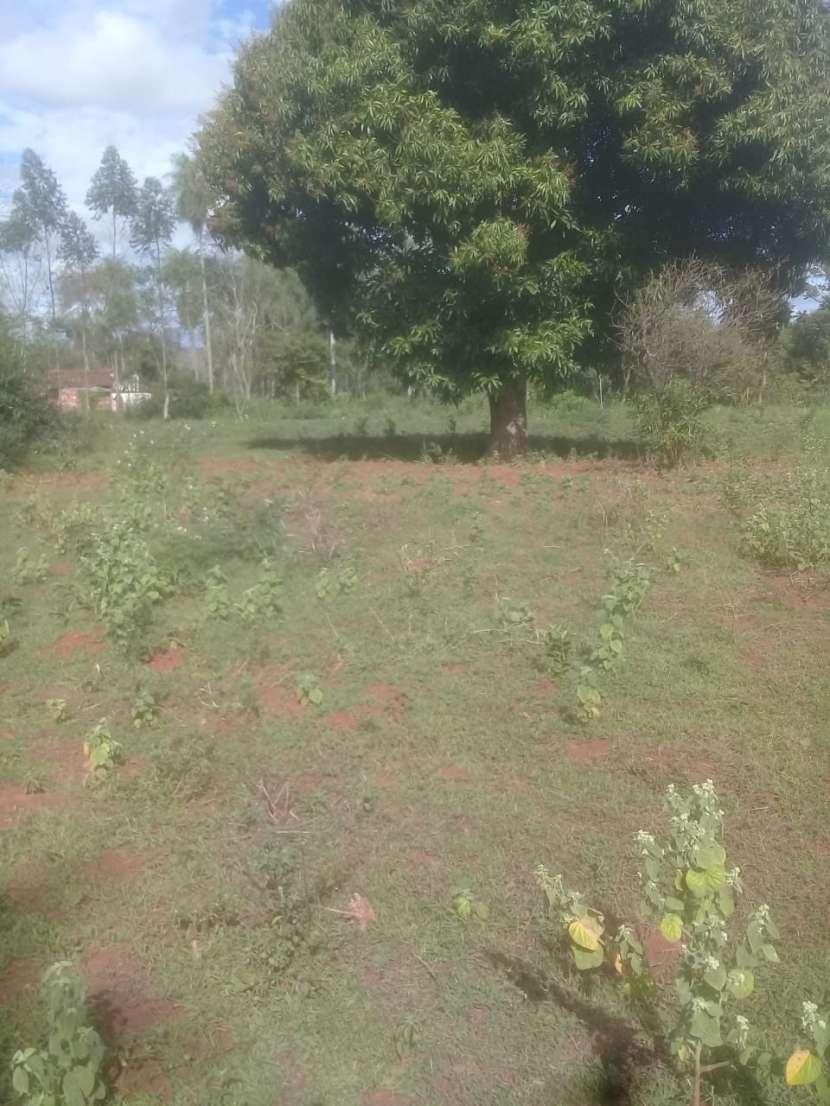 Terreno de 2 hectáreas en Yaguarón - 0