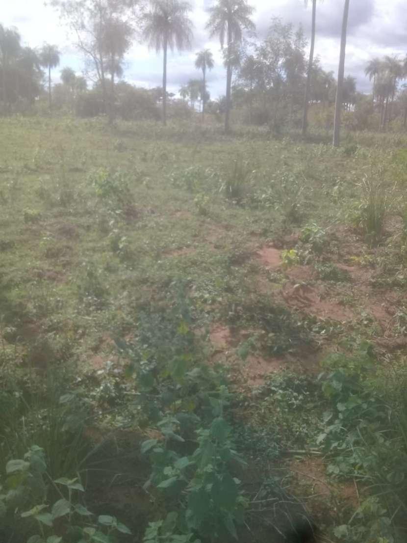 Terreno de 2 hectáreas en Yaguarón - 1