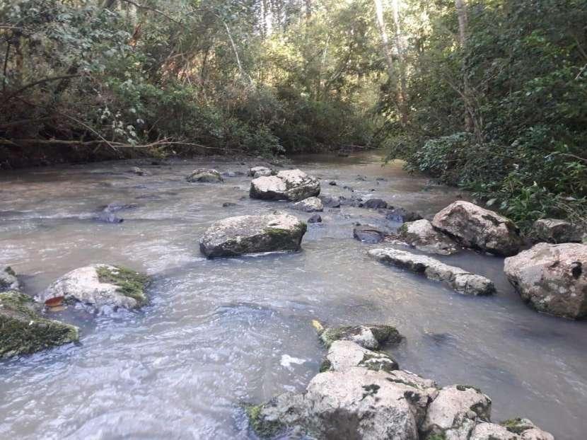 Terreno de 5 hectáreas en San Juan del Paraná con arroyo - 1