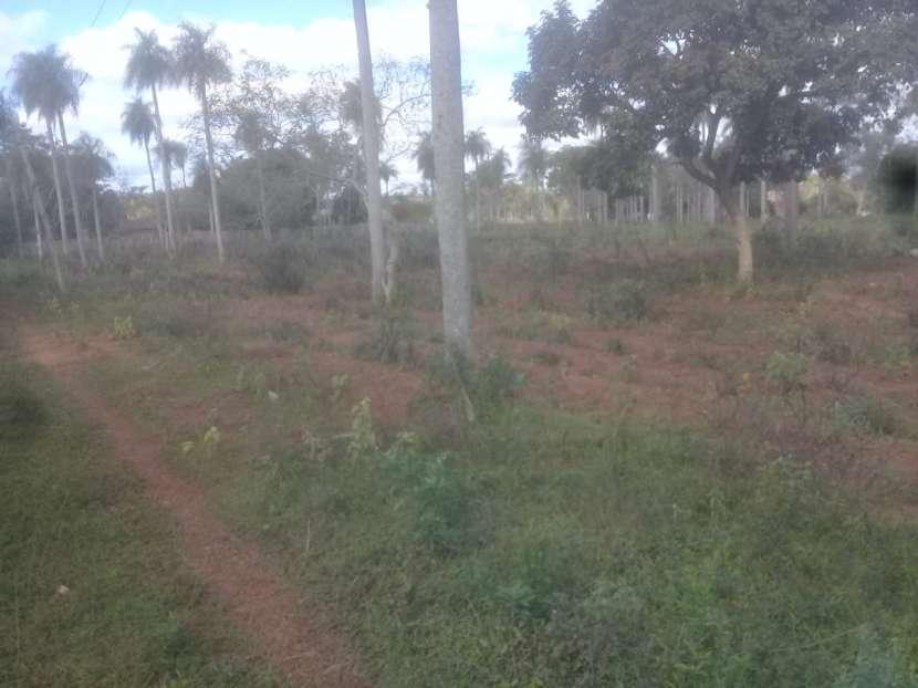 Terreno de 2 hectáreas en Yaguarón - 3