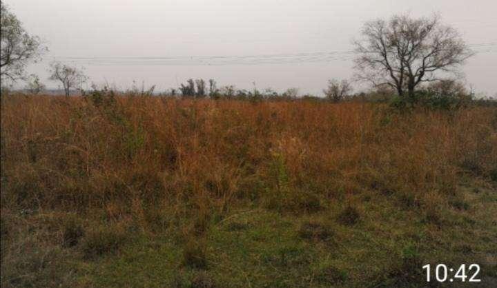 Casa con terreno de 10 hectáreas en Atyrá - 2