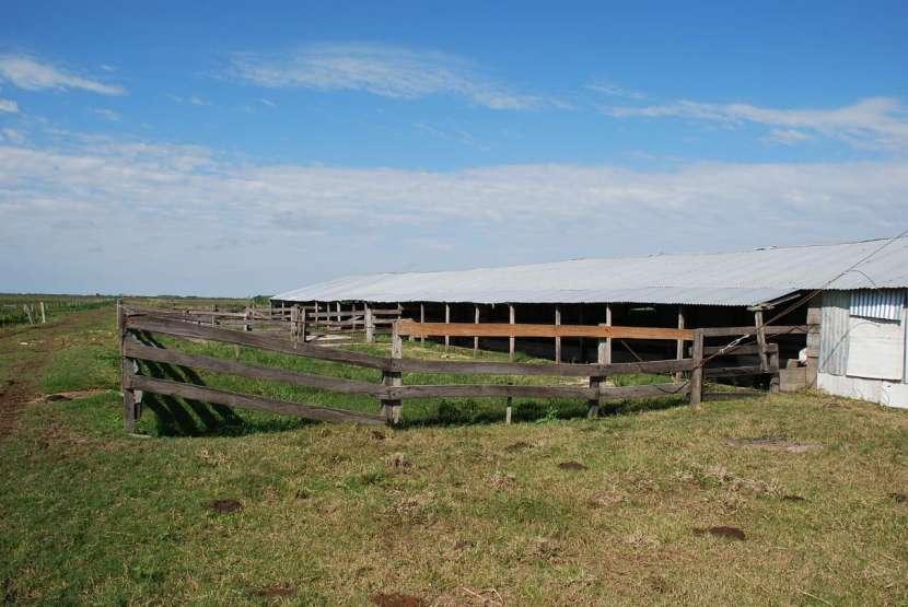 Terreno de 472 hectáreas en Juan de Mena - 2