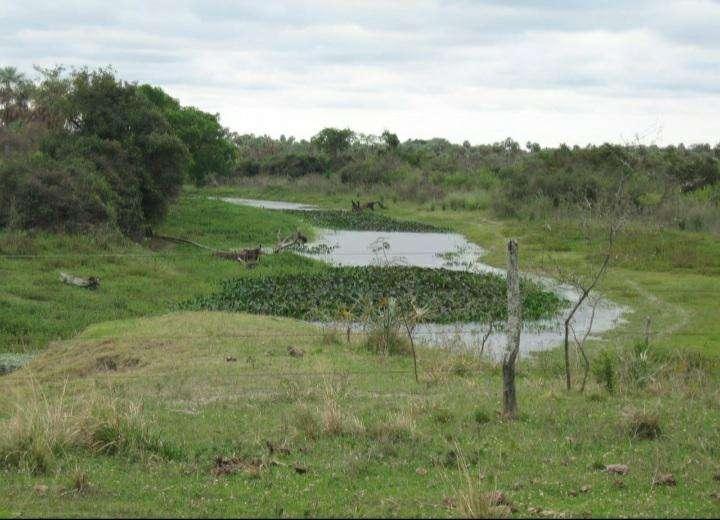 Terreno de 2.400 hectáreas en Villeta - 5