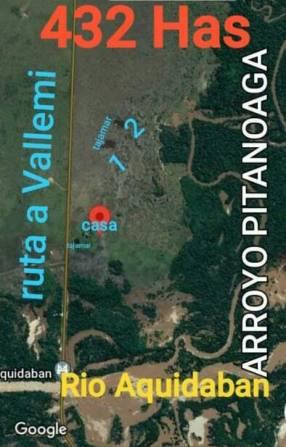 Campo de 432 hectáreas en Concepción