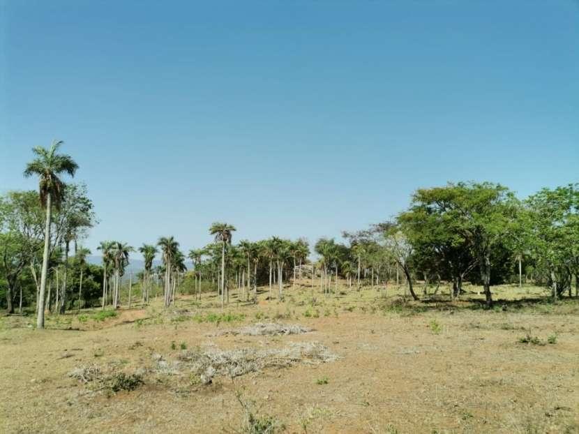 Terreno de 10 hectáreas en Caacupé COD 0154 - 4