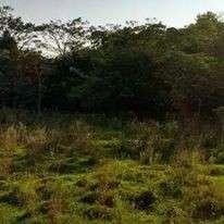Terreno de 8 hectáreas en San José de los Arroyos COD 0148 - 0