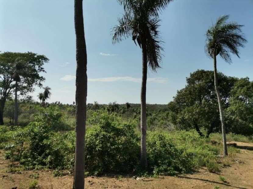 Terreno de 10 hectáreas en Caacupé COD 0154 - 5