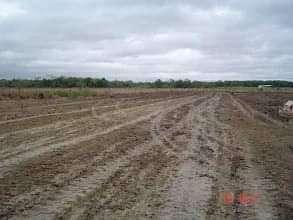 Granja avícola en Loma Grande Nueva Colombia COD 0163 - 4