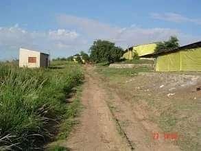 Granja avícola en Loma Grande Nueva Colombia COD 0163 - 5