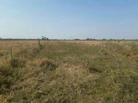Propiedad ganadera y agrícola de 470 hectáreas - 7