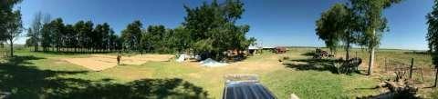 Campo agroganadero sobre ruta asfaltada - 1