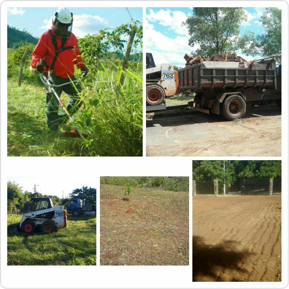Servicio de jardinería, corte, poda y destronque de árboles, empastado y mantenimiento de jardines y otros